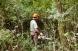 Entretien de zone en friche depuis de longues années par sélection des végétaux
